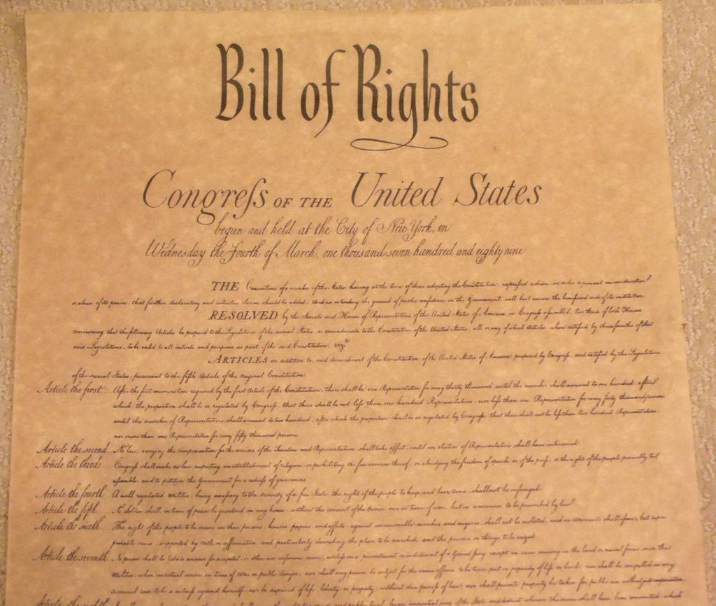 the bill of rights Bill of rights: primary documents of american history (virtual services and programs, digital reference section, library of congress.