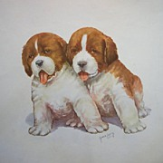 Vintage St. Bernard Puppies Watercolor by Grace Lopez