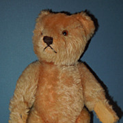 "9"" Steiff Golden Mohair Teddy Bear, ""Rudy"""