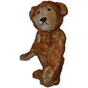 Steiff Petsy Teddy Bear 13&quot;