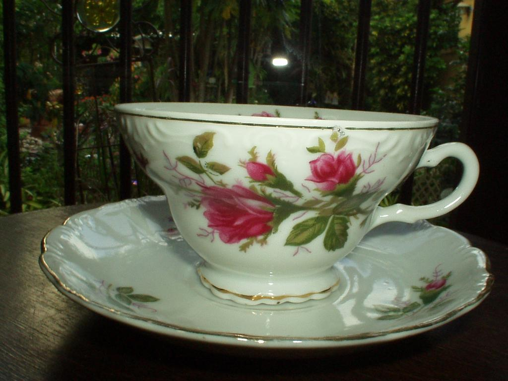 Moss Rose set of Cup and Saucer