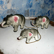 Family of Elephants on Chain