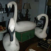Fine Set 3 American Paint Decorated Carved Wood Swan Decoys
