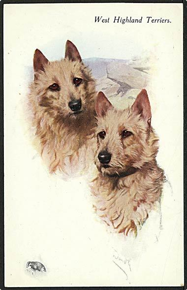 """West Highland Terriers""  (1930')"