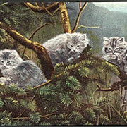 &quot;Cats&quot;  (1910')