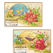 SALE Two 1889 Victorian German Dentist Advertising Trade Cards - Embossed Butterflies and ...
