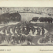Barnum and Bailey Postcard. Elephant Dressage