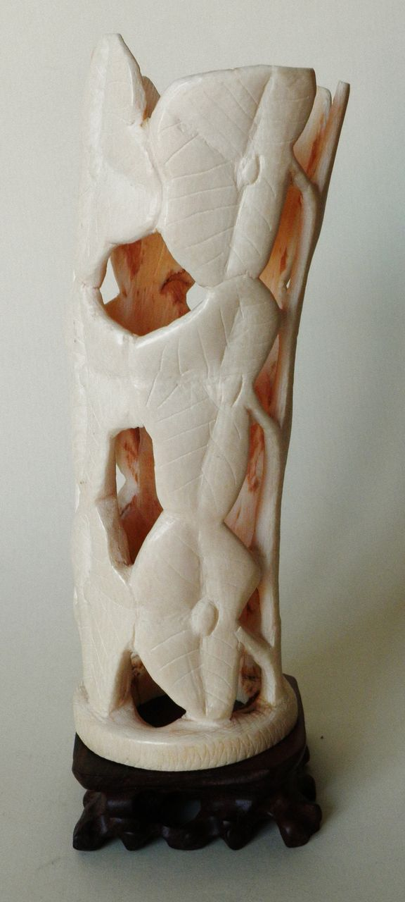 Decorative bone carving