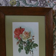 Luscious PAUL DE LONGPRE Chromolithograph Prints of Roses- A Pair!