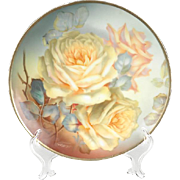 Hand Painted Bavarian Sevres Charger