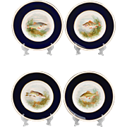 Set of 12 Fondeville Ambassador Ware Fish Plates