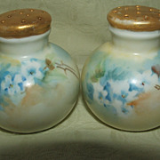 Antique Hand Painted China Salt And Pepper Shakers