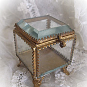 Sweet  Antique Petite Vitrine or Glass Display Box