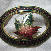 1909 Dated Enamel Maple Leaf Brooch