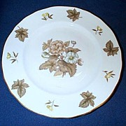Royal Worcester Dorchester Plate Set of 4