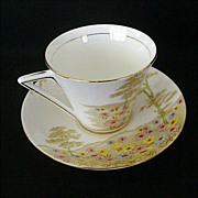 Royal Mayfair China Tea Cup and Saucer # 218