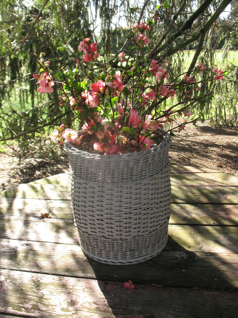Wicker Basket with Weave Patterns and Wood Bottom Circa 1920's