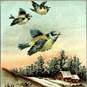 SALE PENDING Vintage Post Card Seasons Greetings Birds with Winter Scene