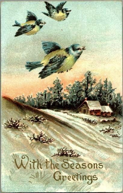 Vintage Post Card Seasons Greetings Birds with Winter Scene