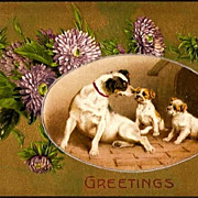 REDUCED Vintage Post Card Winsch Greetings Terrier Dog, Puppies and Purple Mums