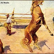 "REDUCED Vintage Post Card Western Artist Signed Cowboy ""Roping the Broncho"""