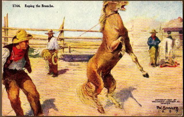 "Vintage Post Card Western Artist Signed Cowboy ""Roping the Broncho"""