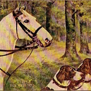REDUCED Vintage Post Card Art Greetings White Horse with Spaniel Dogs
