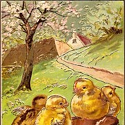 Vintage Post Card Easter Greetings Chicks and Cherry Blossom Tree