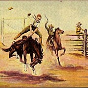 Vintage Post Card Western Artist Signed Green Horn Saddle Bronc Rider