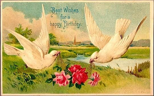 Vintage Post Card Birthday Greetings Doves with Roses