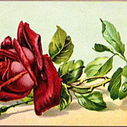 Vintage Post Card Art Greetings Red Rose