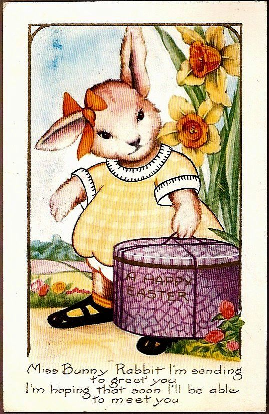 Vintage Post Card Easter Greetings Dressed Rabbit with Hatbox and Daffodils