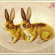 Vintage Post Card Easter Greetings Two Rabbits in Egg