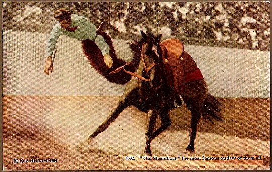 Vintage Post Card Artist Signed Western Photo Print Cowboy Bucked Off Horse