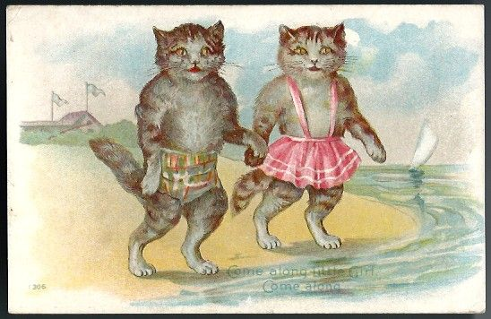 Vintage Post Card Dressed Cats in Swimwear