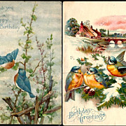 Vintage Post Cards Birthday Greetings Blue Birds (2)