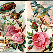Vintage Post Cards Birthday Greetings Blue Birds and Pink Roses