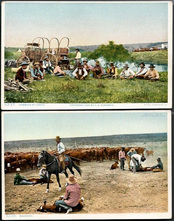 Vintage Post Cards Western Cowboys, Horses and Cattle (2)