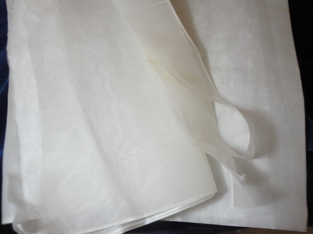Creamy  White Silk Organdy Fabric From France!