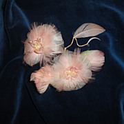 SALE Antique Feather Millinery Flowers