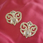 Gorgeous Antique Appliques-Titanic Era
