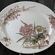 SALE Large Victorian Brown Transferware Platter - Birds & Floral 1889