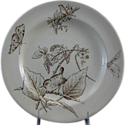 SALE Aesthetic Brown Transferware Plate ~ Birds & Moths 1879
