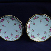 Pair of Copelands China Dessert Plates with Roses Retailed by Davis, Collamore & Co. Ltd.