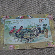 Embossed Thanksgiving Postcard, Drawing B. Hofmann, 1909, Turkeys Pulling Cart