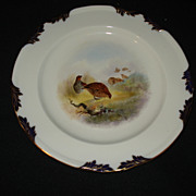 "Early 9 1/4"" artist signed royal worcester plate w/birds"