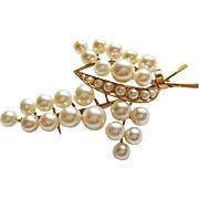 Fine Cultured Pearl Pin in 14k Yellow Gold ~ circa 1950's