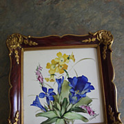 Rosenthal Hand Painted Tile