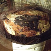 Brown Hat With Feathers 40's or 50's