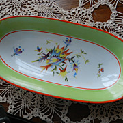 Moschendorf Bavaria China Celery Dish  BRIGHT COLORS
